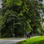 Belfast Castle Park/Grounds