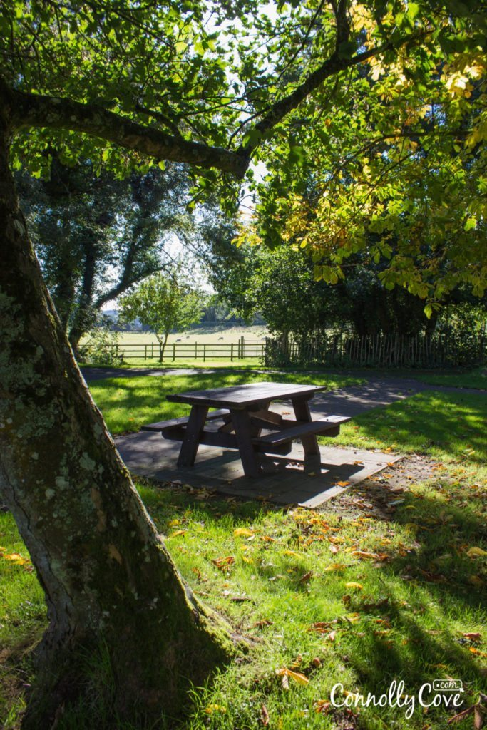 Roe Valley Country Park-Limavady-Picnic Area