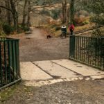 Fairy Glen-Rostrevor-Kilbroney Park