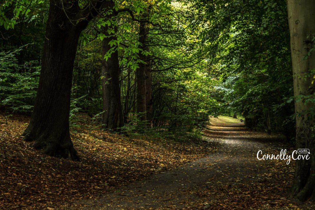 Ormeau Park Belfast Nature Trail- Ormeau-Ravenhill Road