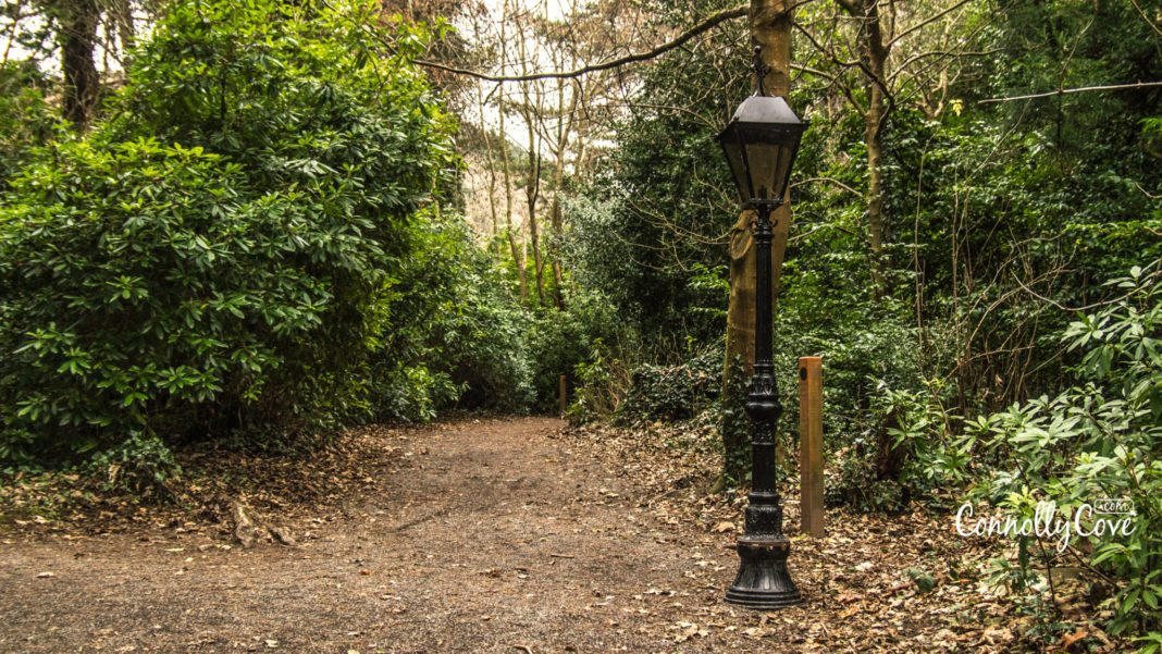 Lamppost- The Narnia Trail-Kilbroney Park-Rostrevor