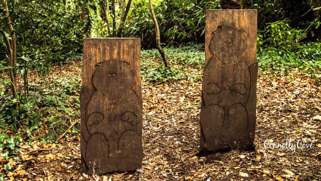 The Beavers-The Narnia Trail-Kilbroney Park-Rostrevor