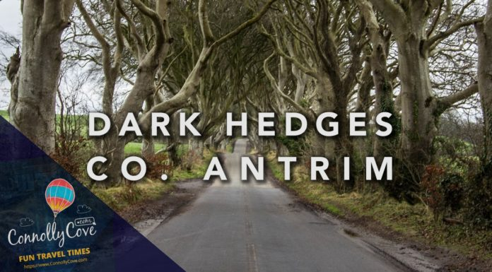 The Dark Hedges-Ballymoney County Antrim