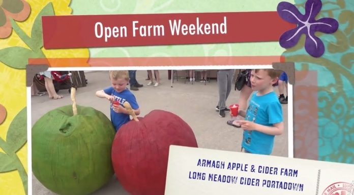 Apple and Cider Farm
