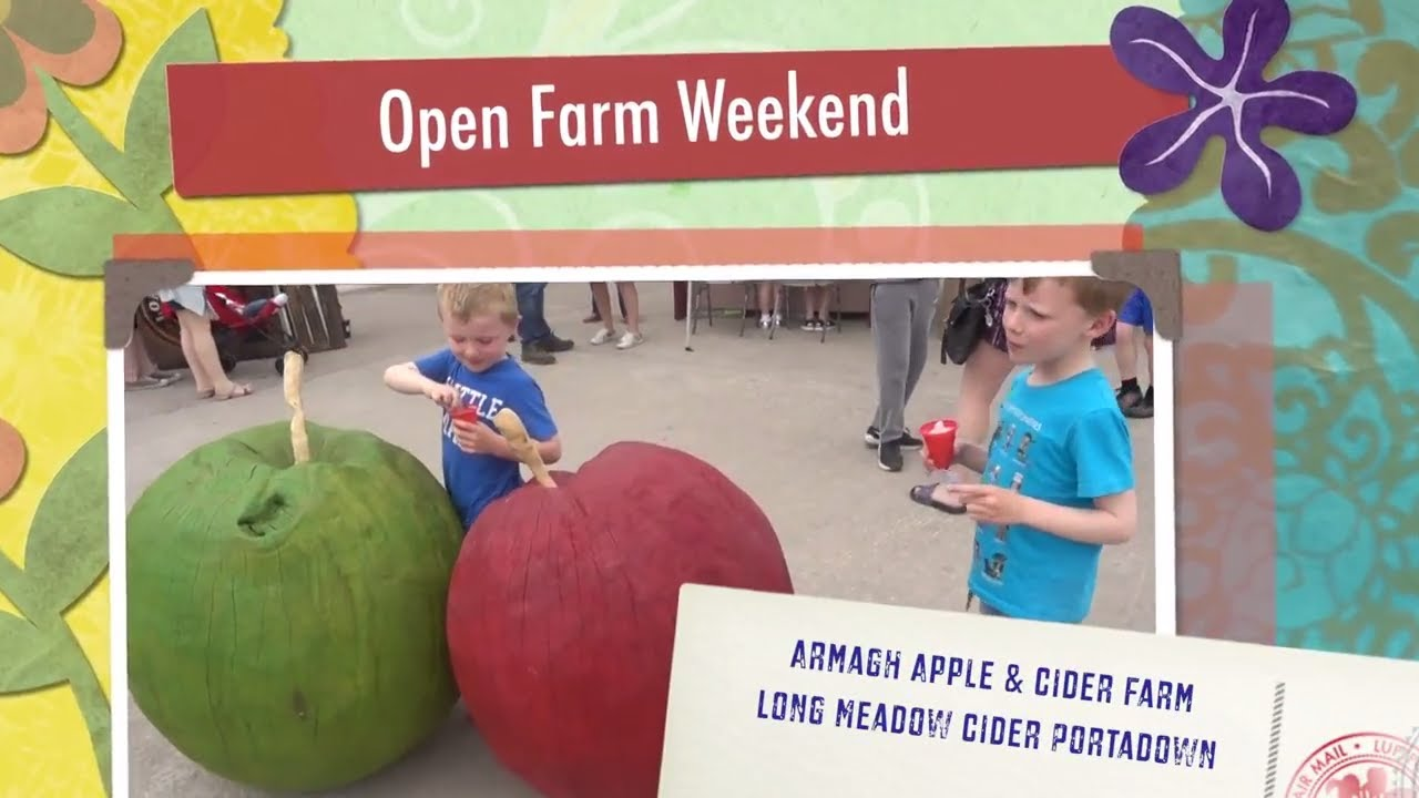 Open Farm Day - Armagh Apple & Cider Farm, Portadown - Long Meadow Cider - Northern Ireland Farm