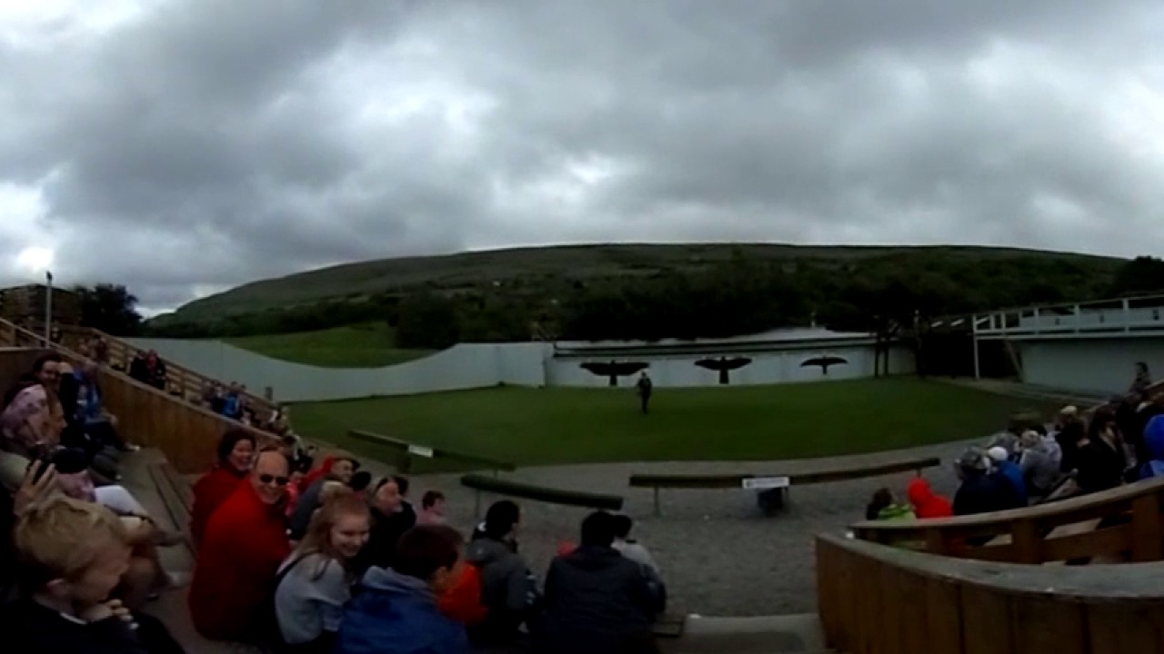 Aillwee Cave - Birds of Prey Show and Inside Aillwee Caves (360 Degree Video) - County Clare