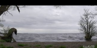 Lough Neagh