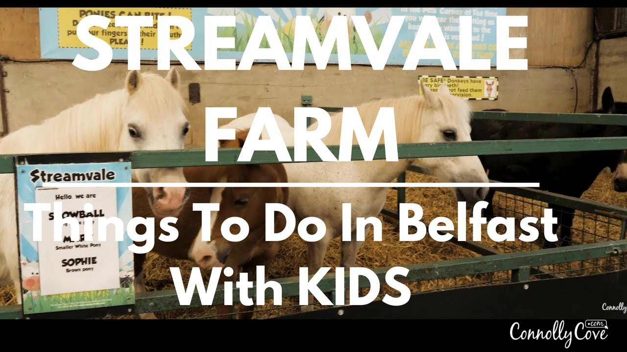 Things to do in Belfast with Kids - Streamvale Open Farm - Farm Visit for Kids