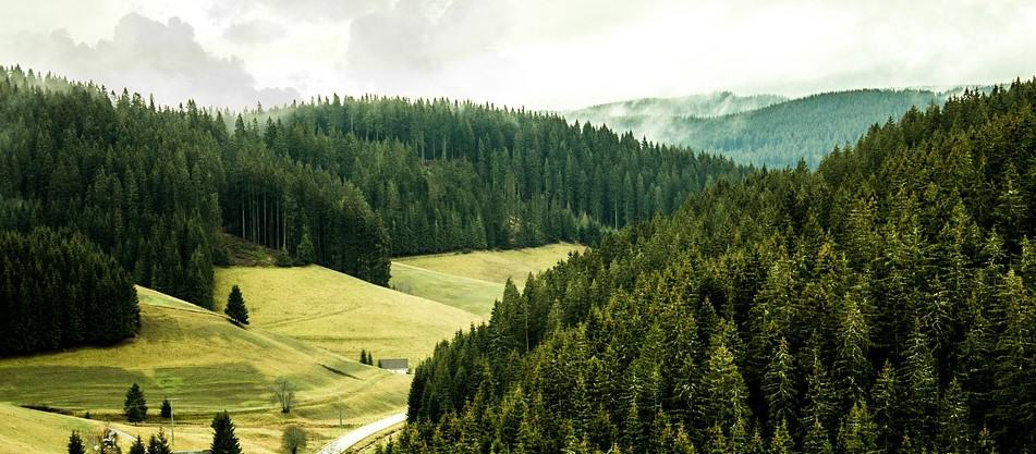 Black Forest - Germany - Natural wonders in Europe