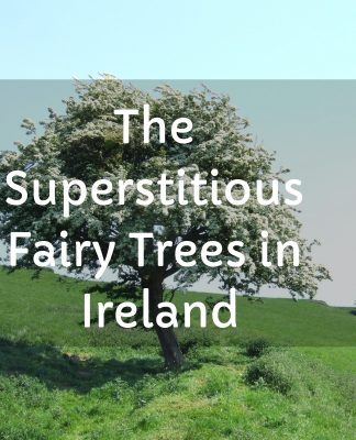 he superstitious Fairy Trees in Ireland