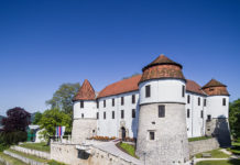 Sevnica Castle Slovenia Image for ProfileTree Blog
