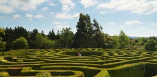 Greenan Maze County Wicklow