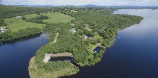 muckross-wood-northern-ireland-staycation
