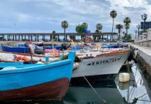 bari boats