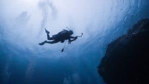 A person scuba diving in the ocean