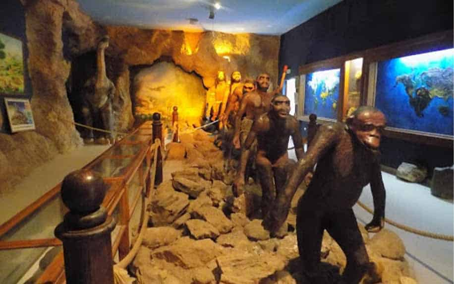 evolution of man exhibition in the Dar Cheraït museum