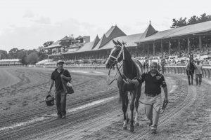 Saratoga race track in New York state