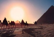 camels beside the pyramids, an example of famous locations in egypt