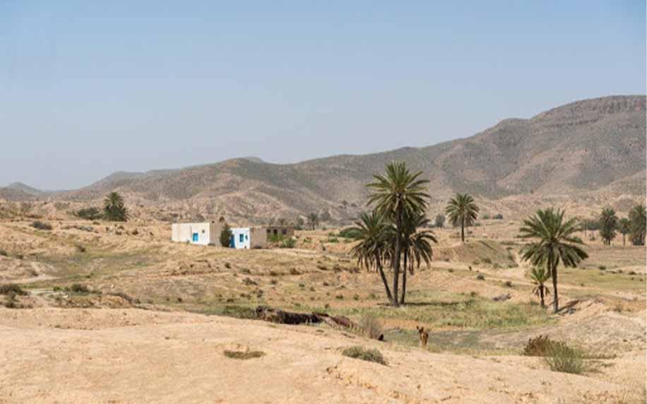 a panoramic shot of ras el ain park in tunisia