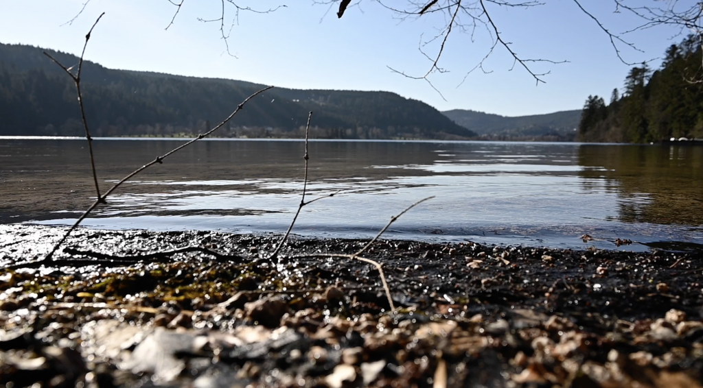 a wide angle shot of lLongemer's Lake