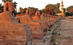 Sunsets over a row of sphinxes in Egypt