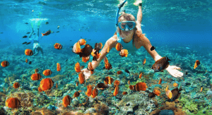 A women snorkel's among a sea of fish in Sahl Hashish